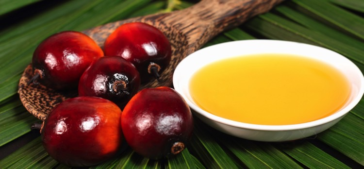 Crude Palm Oil Import In India