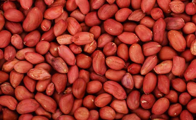 Oil Seeds The Dollar Business